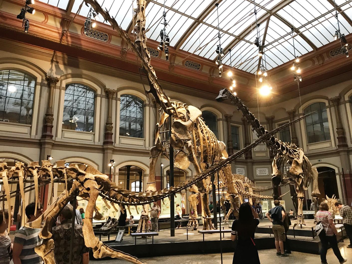 öffnungszeiten Naturkundemuseum Berlin