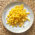 Mais ist eine Zutat für die Tortilla